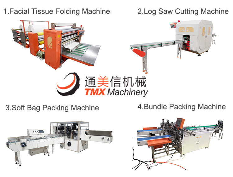 Machine Detail Picture of Facial Tissue Packing Machine